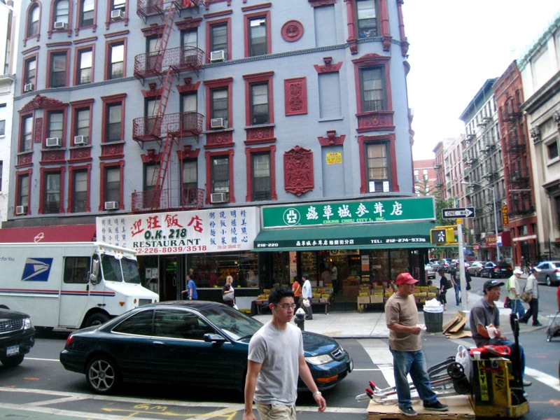 New York, Manhattan, Chinatown, Overseas Chinese